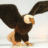 Stuffed Plush Eagle from Stuffed Ark