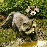Stuffed Plush Raccoons from Stuffed Ark